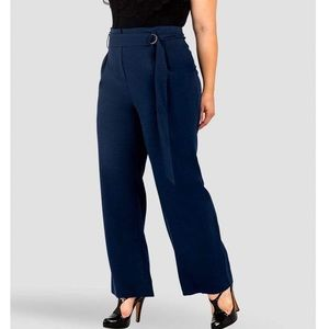 NWT  STANDARDS & PRACTICES Paperbag Waist Pants 20